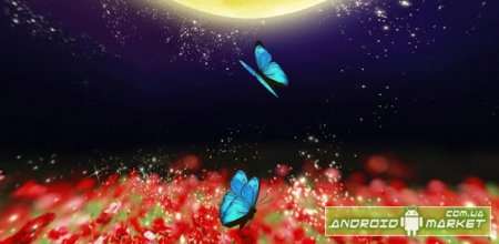 Butterfly under the moon