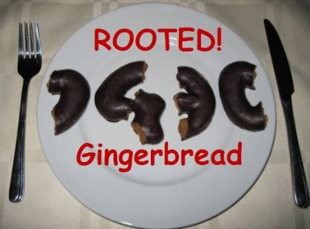 Gingerbreak - ��������� ���� �� Android 2.3 (Gingerbread)