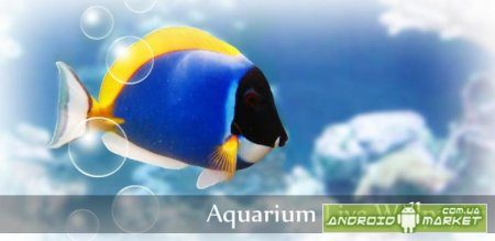 Aquarium Donation Live Wallpaper