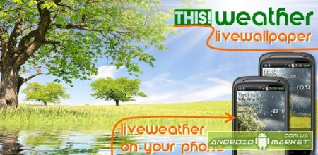 THIS! Weather Live Wallpaper – живые обои