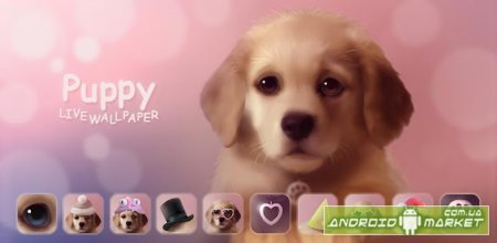 Puppy Live Wallpaper Full