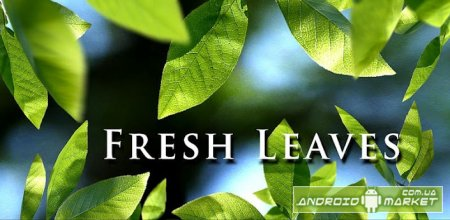 Fresh Leaves Live Wallpaper Pro