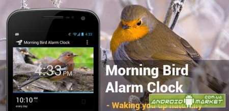 Morning Bird Alarm Clock
