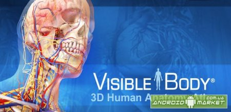 Visible Body 3D Anatomy Atlas