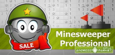 Minesweeper Professional