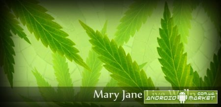 MaryJane Donation L. Wallpaper