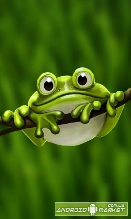 Cute Froggy