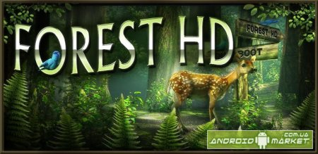 Forest HD - дикий лес